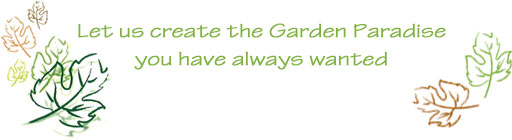 Let us create the Garden Paradise you have always wanted
